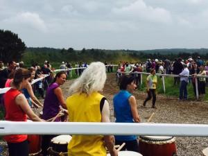 Web Tano Racecourse